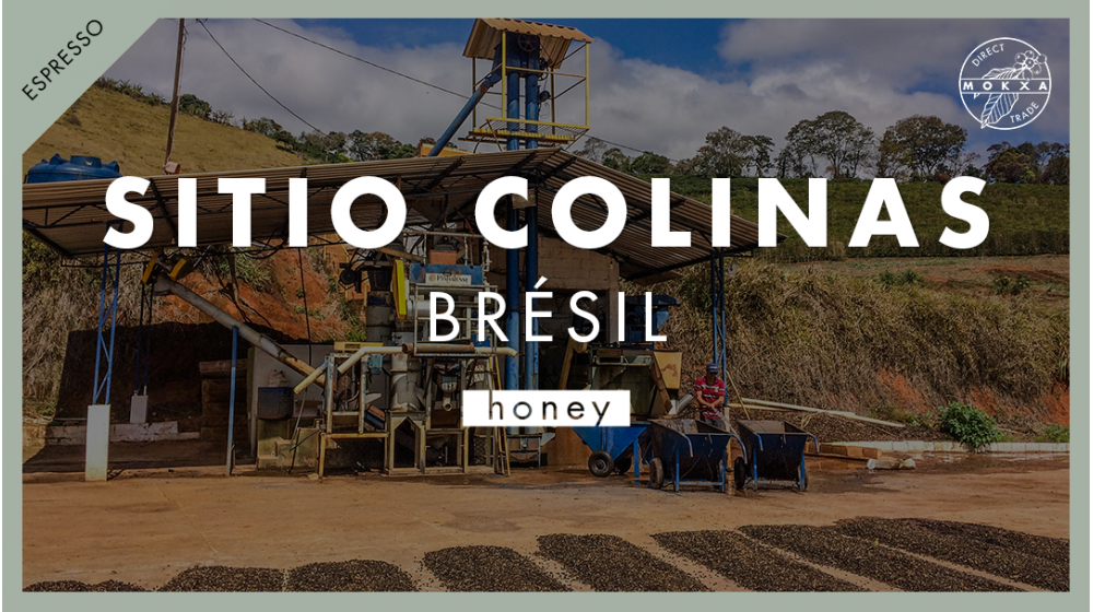 Café de spécialité origine Brésil Sitio Colinas Mantiqueira de Minas Process Honey