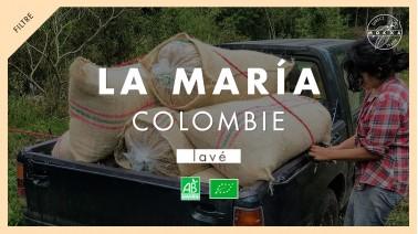 Colombie María direct trade
