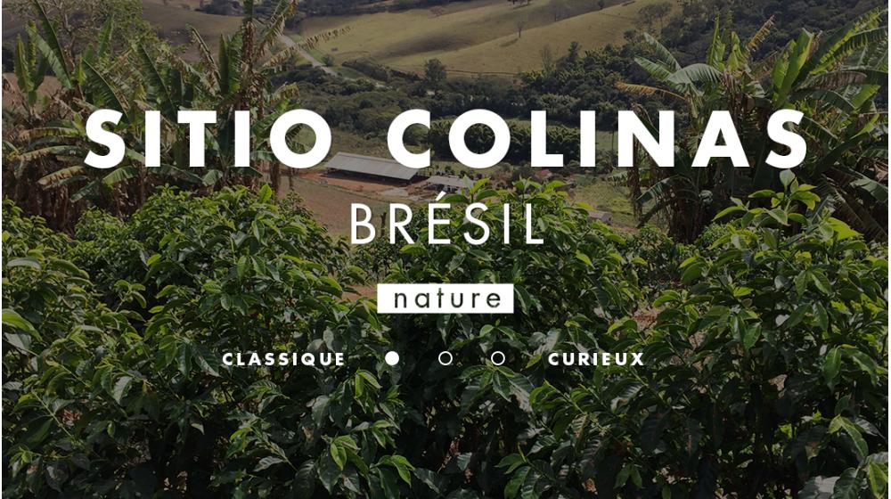 Café de spécialité origine Brésil Sitio Colinas Mantiqueira de Minas