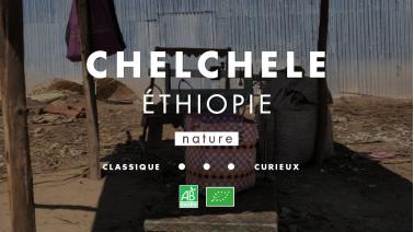 Café de spécialité Éthiopie Chelchele BIO en process nature.