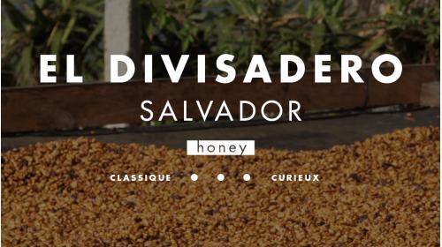 Café de spécialité origine Salvador du producteur Mauricio Salaverria, process honey