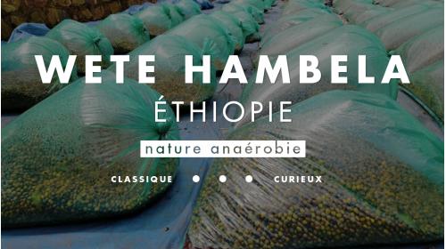 Café d'Ethiopie en process nature, fermentation anaérobie